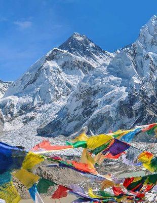 Himalájští tygři